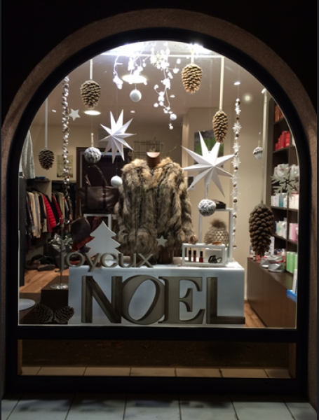 Decoration vitrine de noel fleuriste - Deco noel salon ...